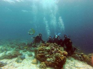 discovery diving at hilutungan island