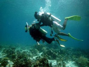 discovery diving at Nalusuan island